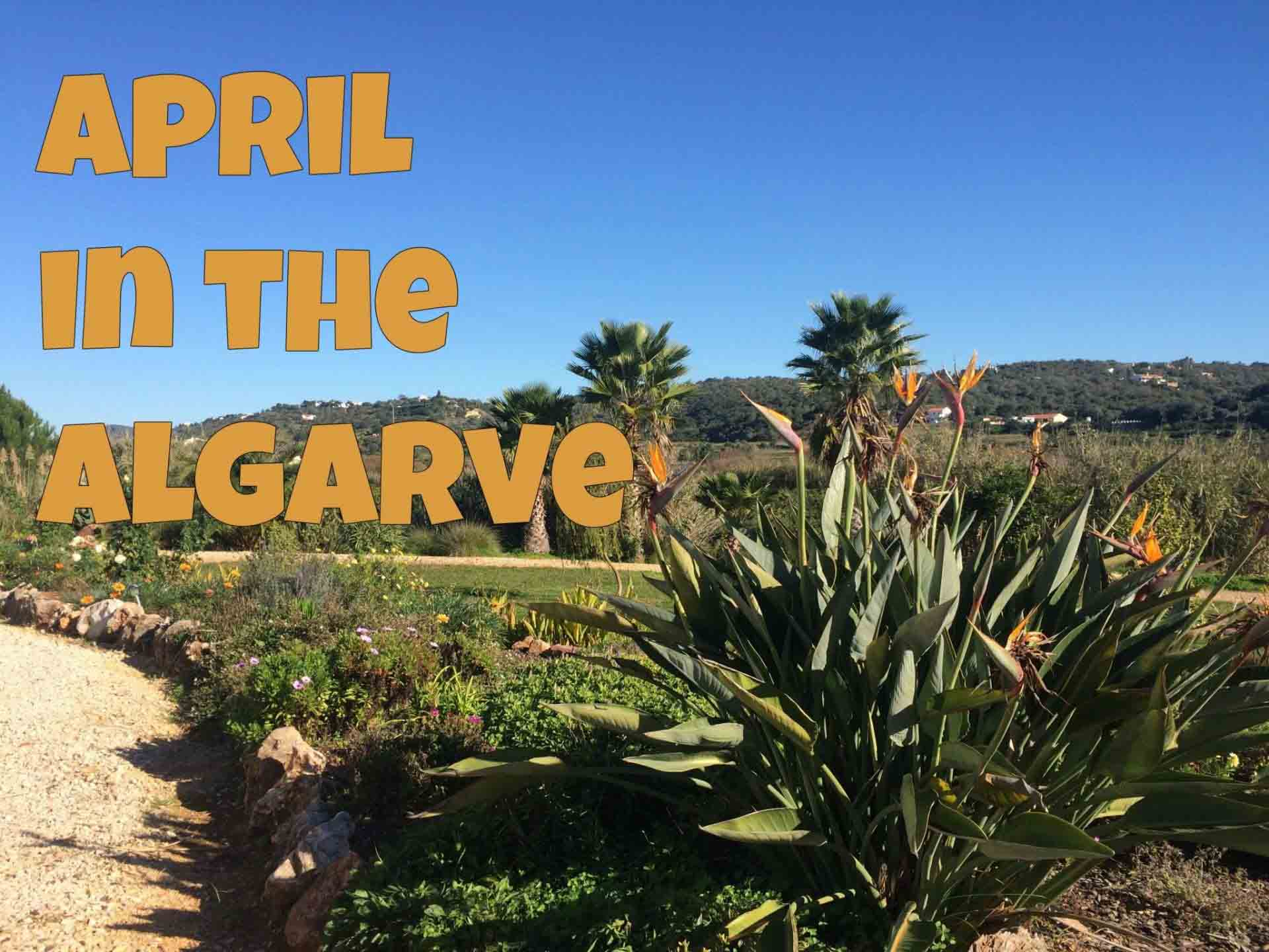 Algarve in April