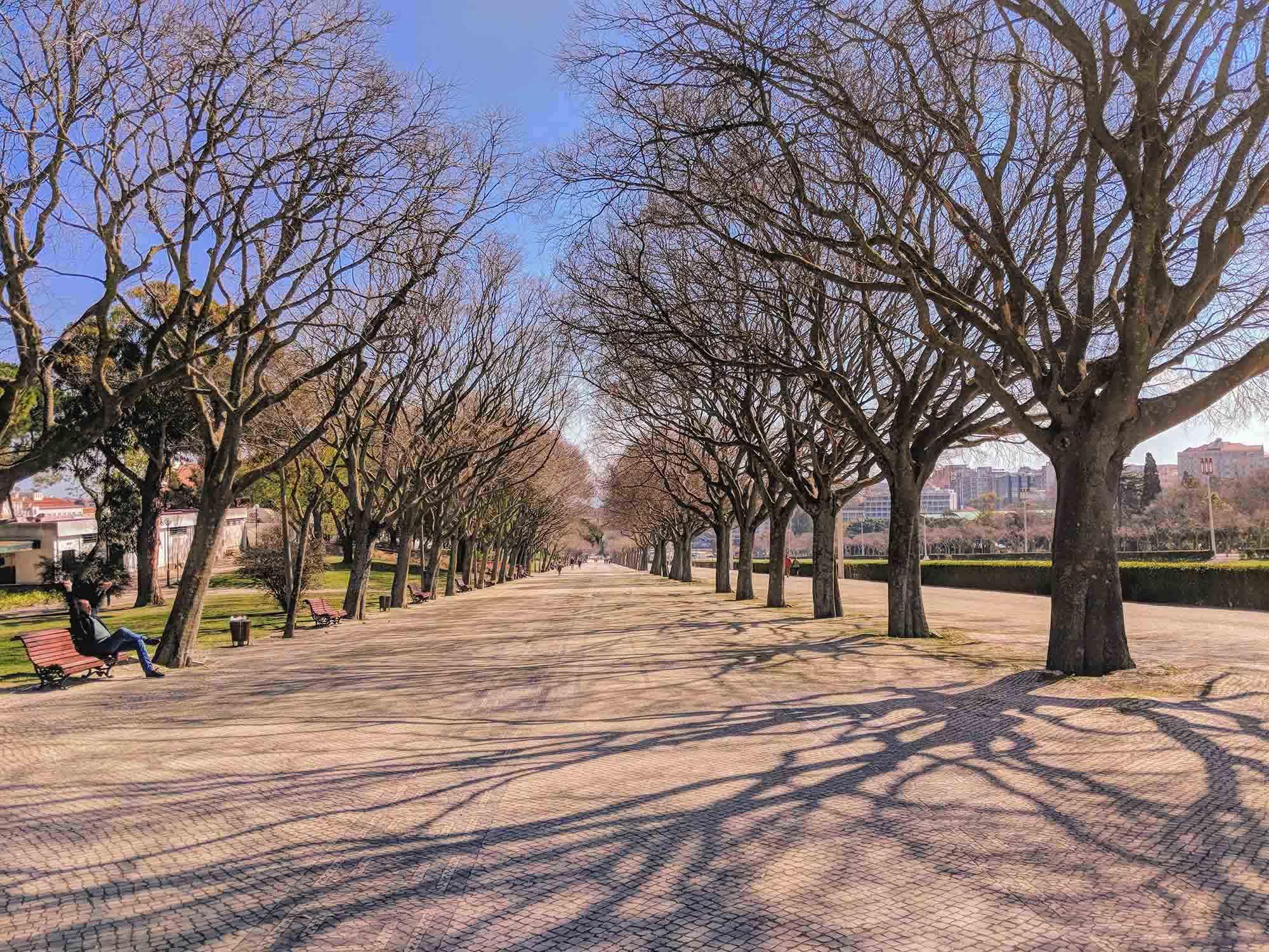 Paque Eduadro VII Lisbon