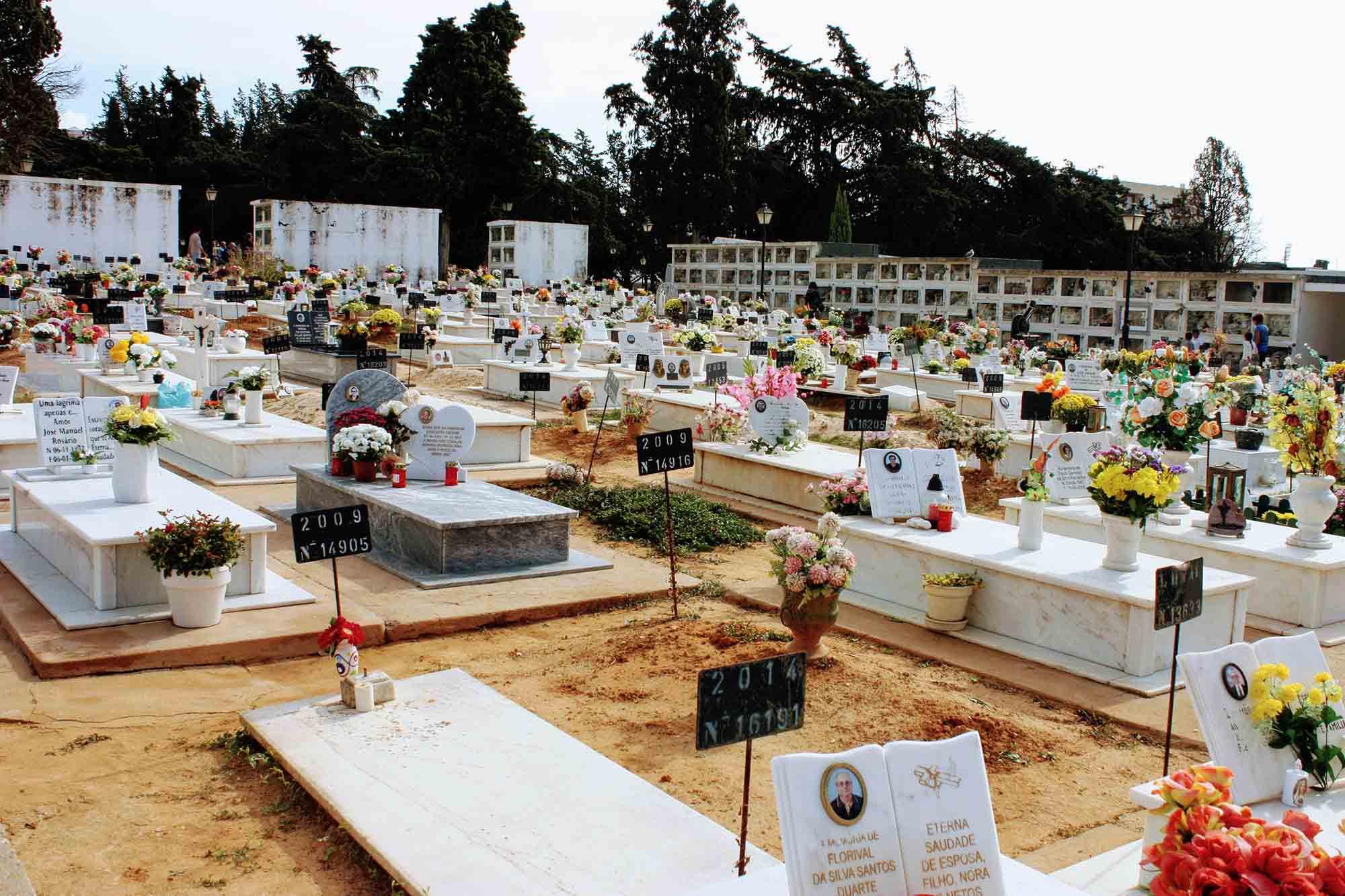 Portuguese Graveyard on November 1st