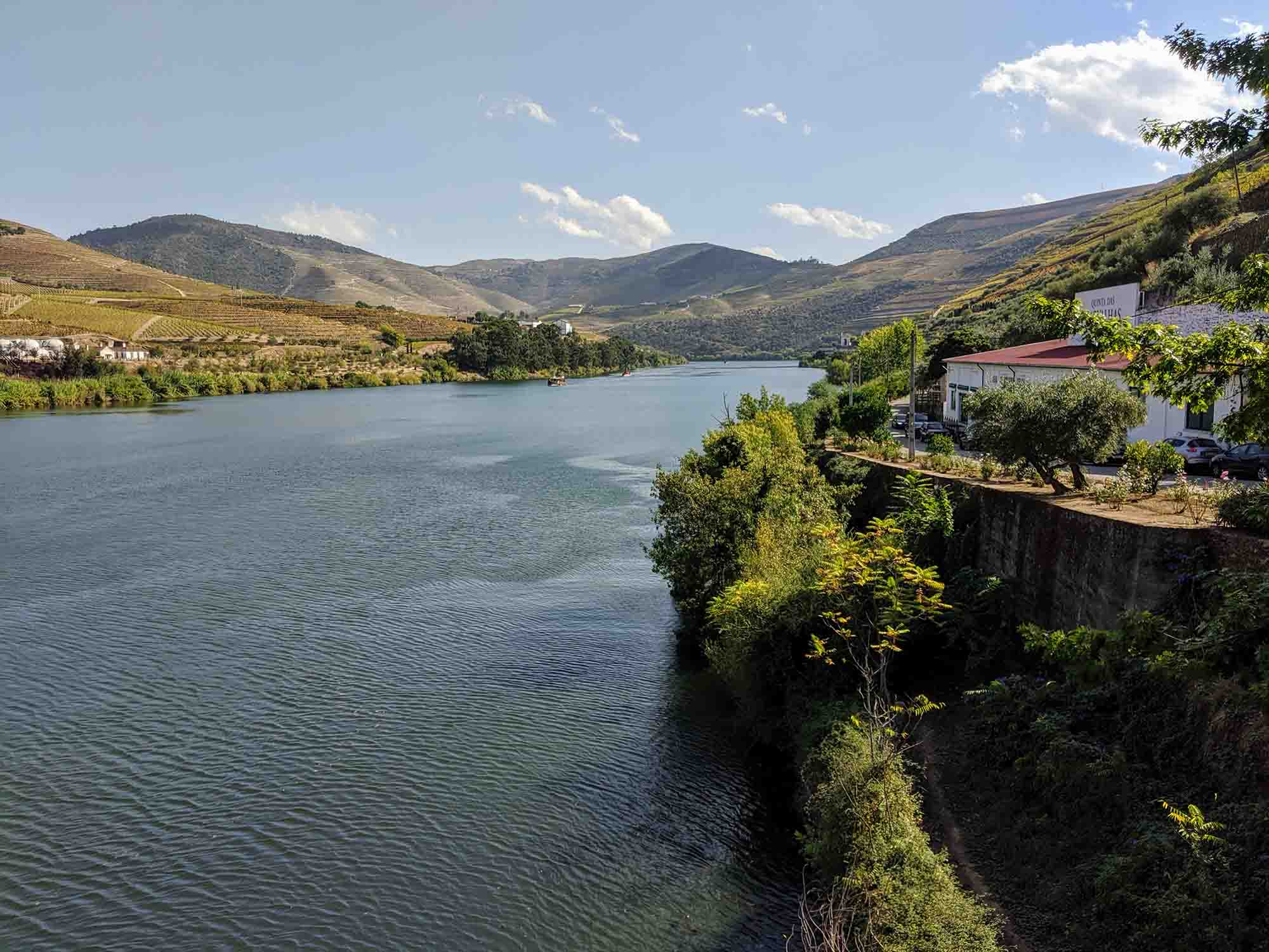 View of the Douro River from Pinhao