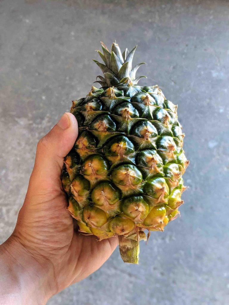 azorean pineapple