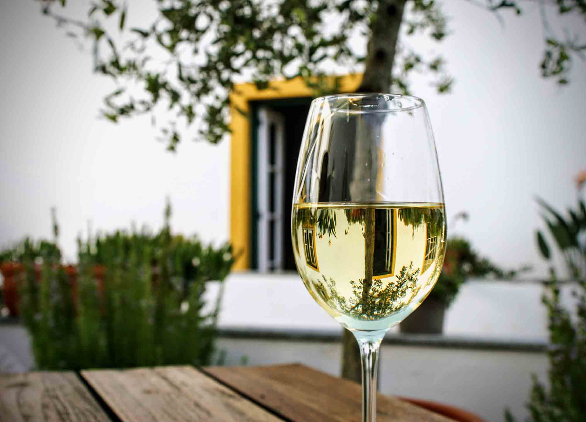 glass white wine portugal