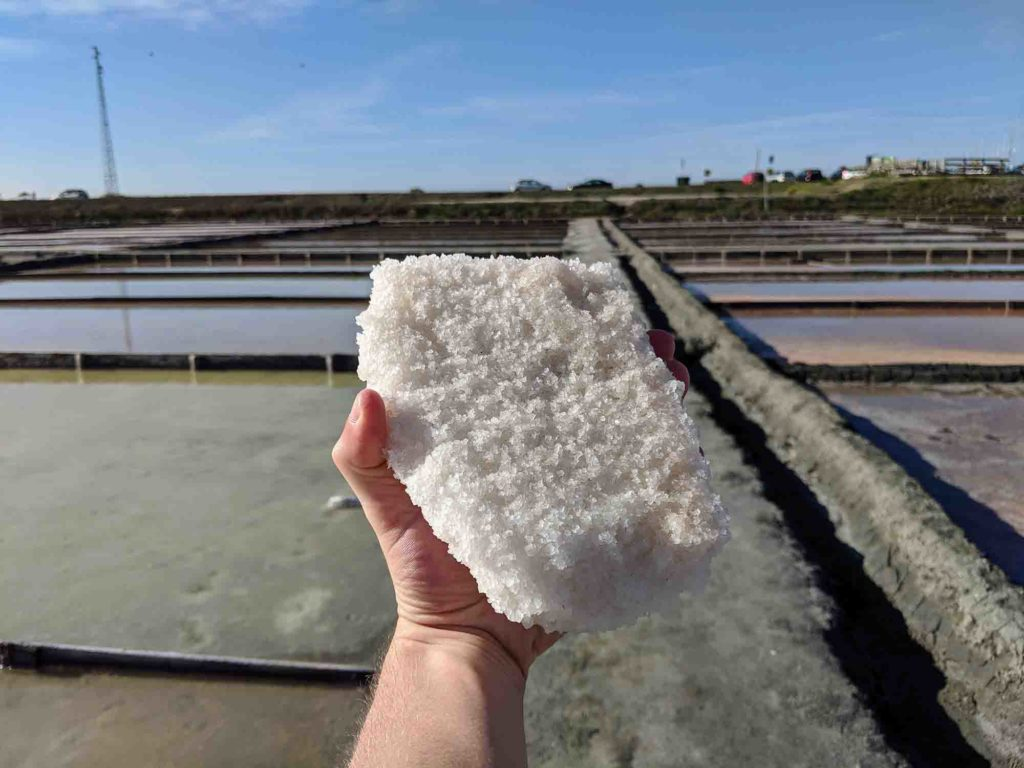 Holding a block of salt at the salt marshes in Aveiro