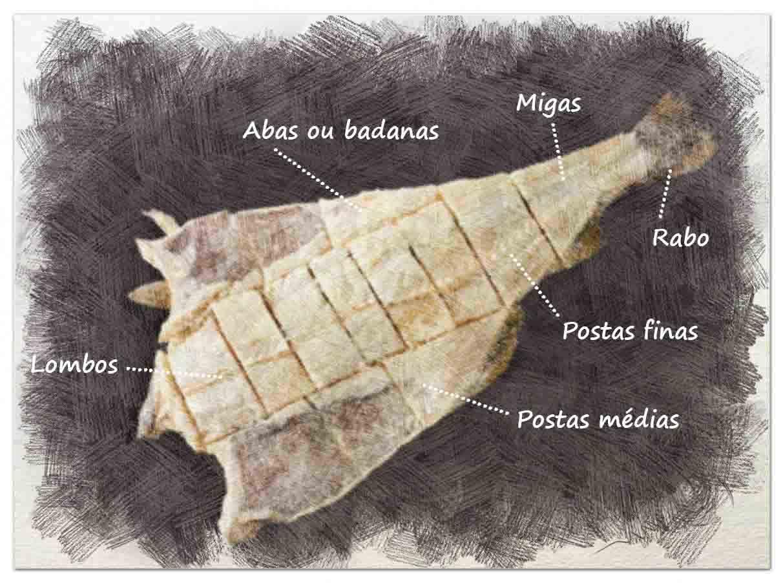 illustration of bacalhau